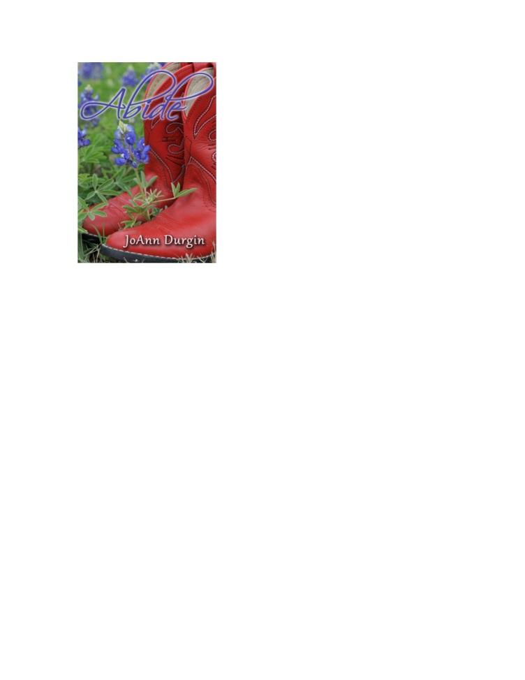 Abide Bk Cover copy